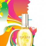 Amostra Gratis de Perfume Escada