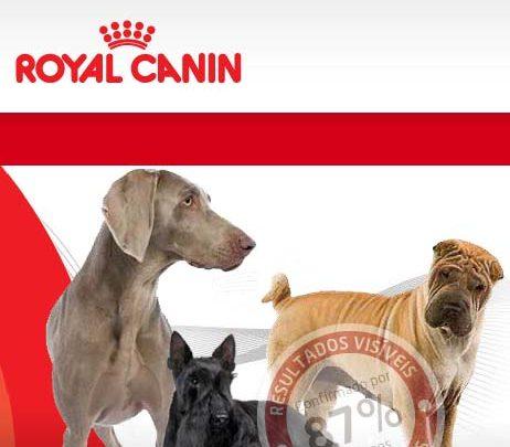 Photo of Amostra Grátis Royal Canin