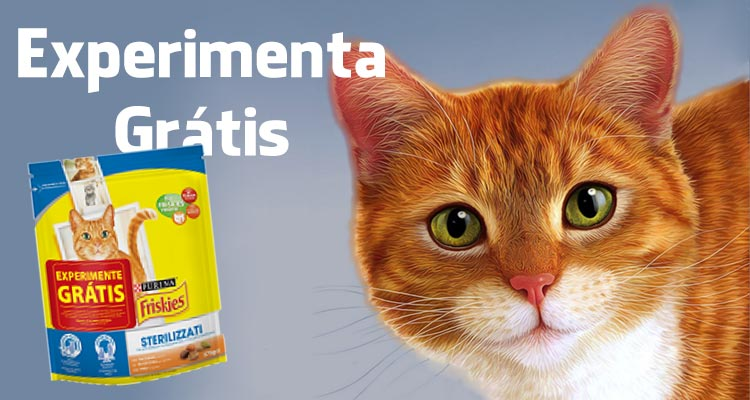 Photo of Experimenta Grátis Friskies Gatos Esterilizados
