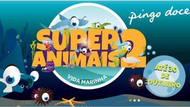 Super Animais 2 Pingo Doce