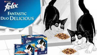 Amostra Grátis Snacks para Gato Felix