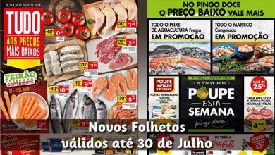 Folhetos Pingo Doce e Continente até 30-07-2018