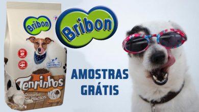 Amostras Grátis Bribon