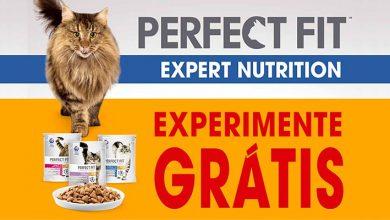 Experimenta Grátis Alimento Perfect Fit Gato