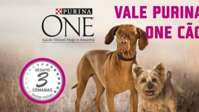 Photo of Vale Purina One Cão