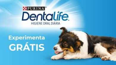 Photo of Experimenta Grátis DentaLife