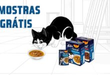 Photo of Amostras Purina Felix Soup