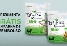 Photo of Experimenta Grátis Beyond Bio